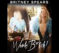 Britney Spears - NEW SONG (Snippet 1)