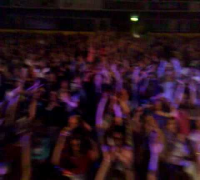 Manchester Crowd