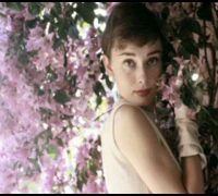 Tribute to Audrey Hepburn